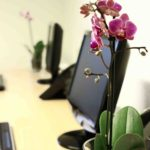 Serviced office space- Heath House Conference Centre, Uttoxeter, Staffordshire